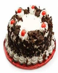 Exotic black forest