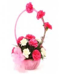 Beauty in Pink