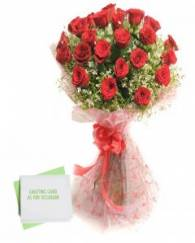 Red Rose with Greeting Card