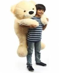 4 5 Fit Teddy