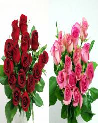 30 Red Stem CB  Red & Color