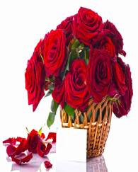 Red Rose Bunch with Love Letter