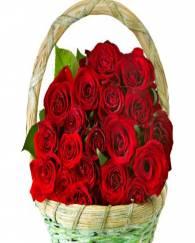 Romantic, Rose basket
